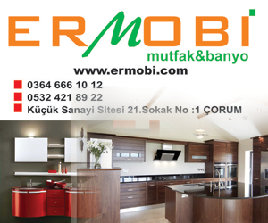 ermobi