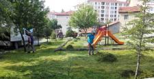 Sungurlu'da Beyzaj Çalışması