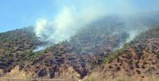 İskilip'te Orman Yangını