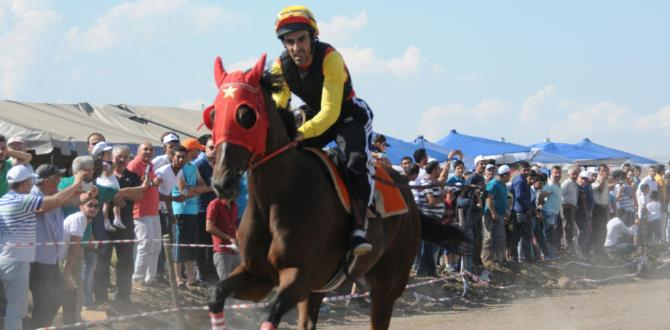 At Yarışları Nefes Kesecek