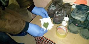 İskilip'e Uyuşturucu Operasyonu