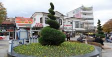 Belediye, 1 Milyon Çiçek Dikiyor