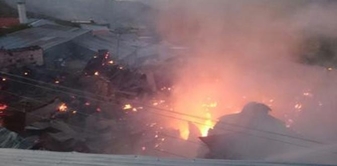 Elektrik Telleri Felakete Yol Açtı