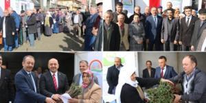 Ortaköy'de, Asma Fidanı Dağıtıldı