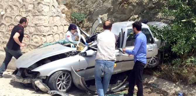 Çorumlular Amasya'da Kaza Yaptı