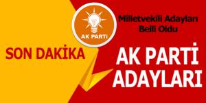 AK Parti'de Milletvekili Adayları Açıklandı