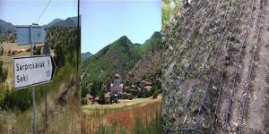 Sarpınkavak Köyü'ne Damlama Tesisi Yapılacak