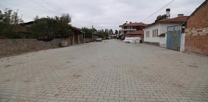 292 Köye Parke Taşı Döşenecek