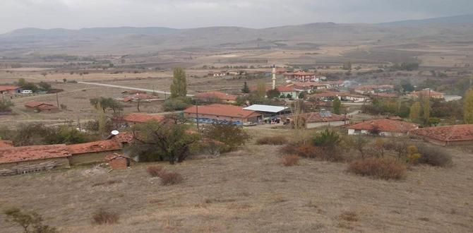 Sarılık Köyü'ne İçme Suyu Deposu