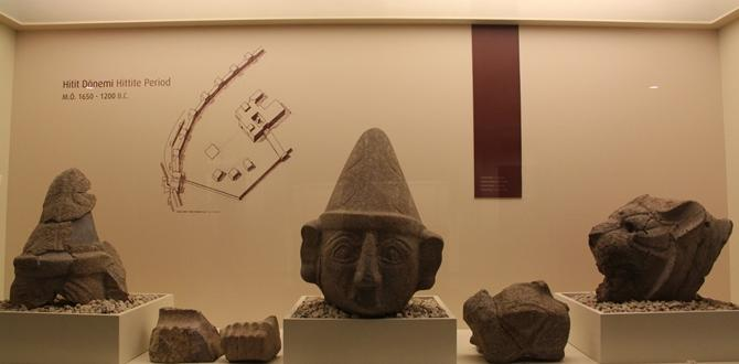 Bu Müzede 6 Medeniyetin Eserleri Bulunuyor