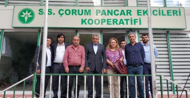 CHP, STK Ziyaretlerine Devam Etti