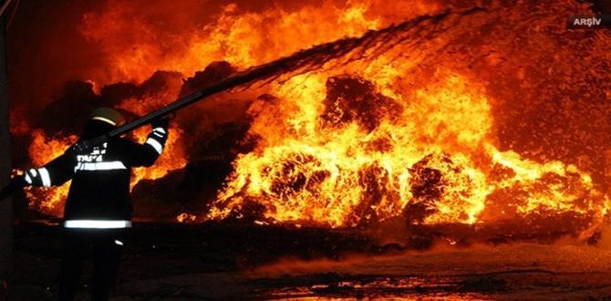 Biyokütle Enerji Santralinde Yangın