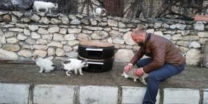 Kediler Üşümesin Diye Lastikten Ev Yaptı