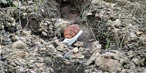 Alaca'da El Bombası Bulundu