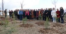 Kadınlar 400 Fidanı Toprakla Buluşturdu