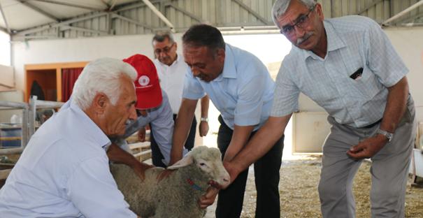 Türkiye'nin İlk Üretim İstasyonu Açıldı
