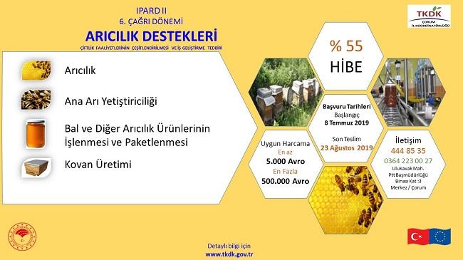 Arıcılık Sektörüne % 55 Hibe