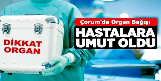 Organ Bağışı 3 Hastaya Umut Oldu