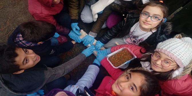 Öğrenciler Evcil Hayvan Parkını Gezdi
